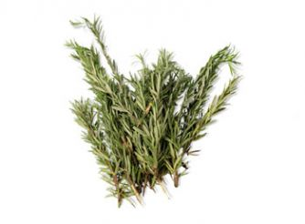 Makar Fresh Rosemary