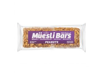 Gormet Peanut & Dried Fruit Muesli Bars